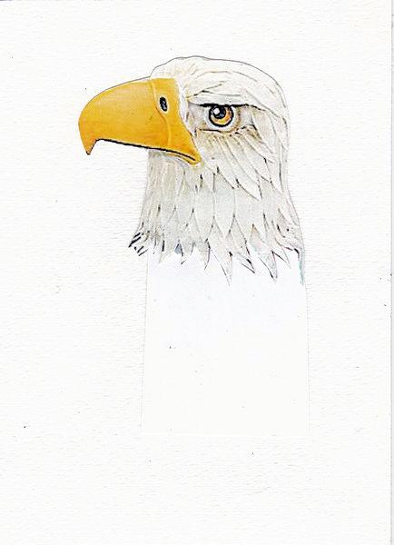 Eagle pdf jpeg