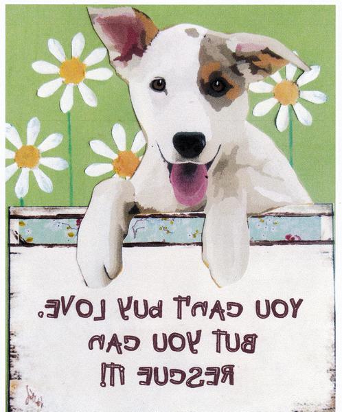 dog pdf photo