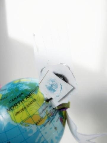 globe face back