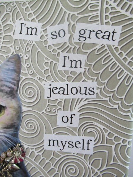jealous cat words