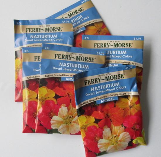 nastur seeds