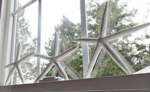 starfish makeover window
