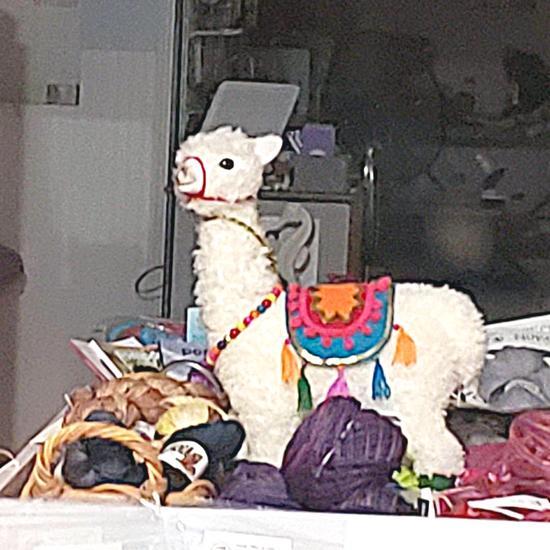 llama yarn shop