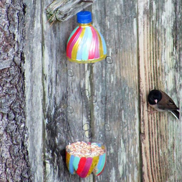 aquafina bottle bird feeder
