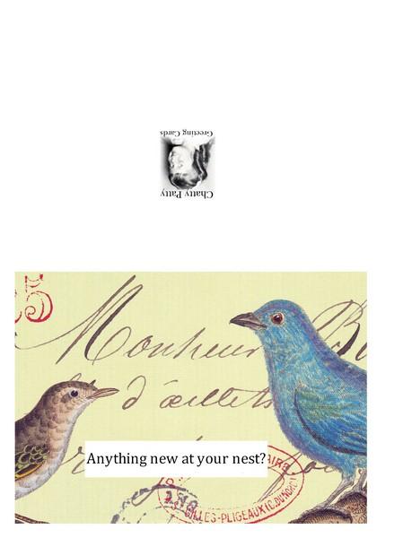 cavallini two birds photo for pdf