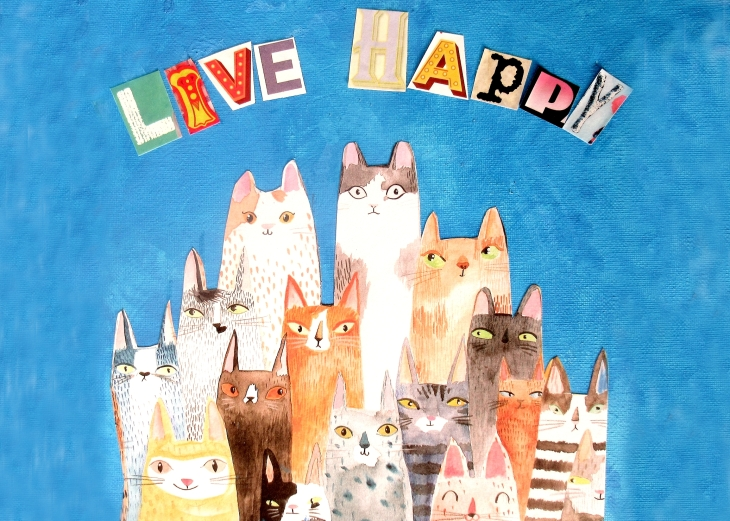 live happy cats for card flip