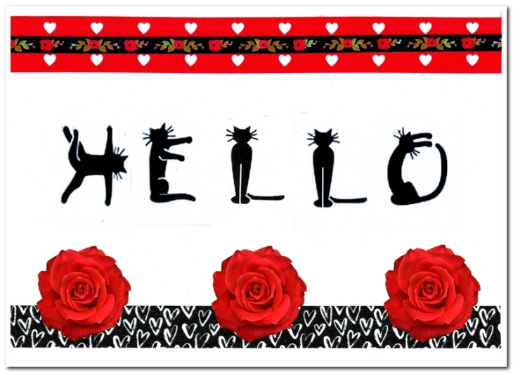 cat hello card feature